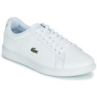 Sapatos Mulher Sapatilhas Lacoste CARNABY EVO BL 21 1 SFA Branco