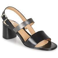 Sapatos Mulher Sandálias Perlato 11805-JAMAICA-NOIR Preto