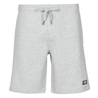Textil Homem Shorts / Bermudas Dickies CHAMPLIN Cinza