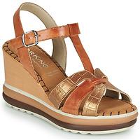 Sapatos Mulher Sandálias Dorking TOTEM Castanho
