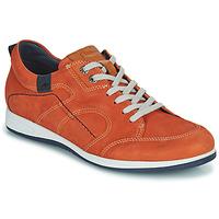 Sapatos Homem Sapatilhas Fluchos 9734-CRETA-CUERO Castanho