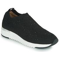 Sapatos Mulher Sapatilhas Caprice 24700 Preto
