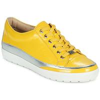 Sapatos Mulher Sapatilhas Caprice 23654-613 Amarelo / Prata