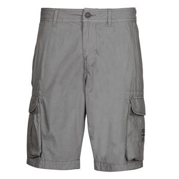 Textil Homem Shorts / Bermudas Napapijri NORI Cinza