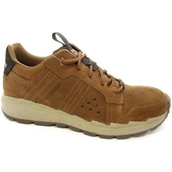 Sapatos Homem Sapatilhas Caterpillar Stratify LO WP Castanho