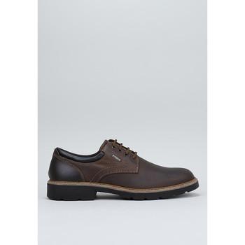 Sapatos Homem Sapatos Imac 600998 Castanho