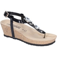 Sapatos Mulher Sandálias Dott. House BK616 Preto