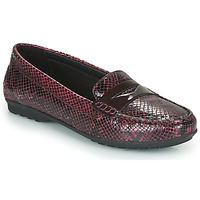 Sapatos Mulher Mocassins Geox D ELIDIA Bordô