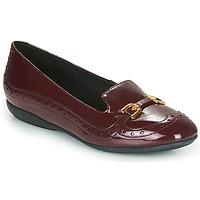 Sapatos Mulher Sabrinas Geox D ANNYTAH Bordô