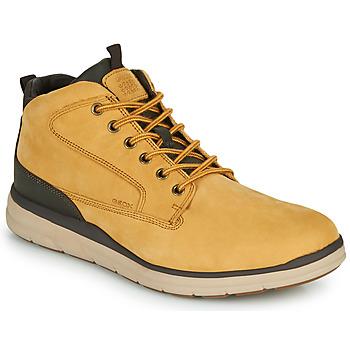 Sapatos Homem Sapatilhas de cano-alto Geox U HALLSON Castanho