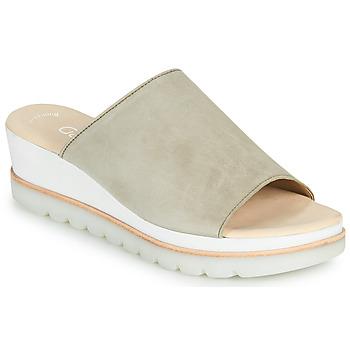 Sapatos Mulher Chinelos Gabor 6464319 Toupeira