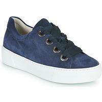 Sapatos Mulher Sapatilhas Gabor 6646446 Marinho