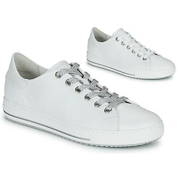 Sapatos Mulher Sapatilhas Gabor 6651550 Branco