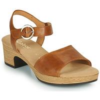 Sapatos Mulher Sandálias Gabor 6272153 Camel