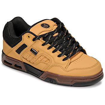 Sapatos Sapatilhas DVS ENDURO HEIR Veado / Preto