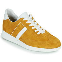 Sapatos Homem Sapatilhas Lloyd BURT Mostarda