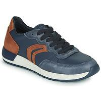 Sapatos Rapaz Sapatilhas Geox J ALBEN BOY Azul