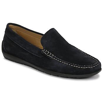 Sapatos Homem Mocassins Lumberjack LEMAN Marinho
