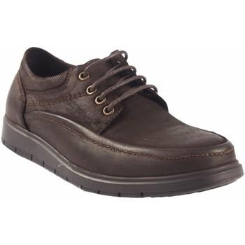 Sapatos Homem Sapatos Vicmart Sapato  721 marrom Marron