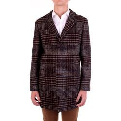 Textil Homem Casacos Manuel Ritz 2932C4448-203731 Castanho