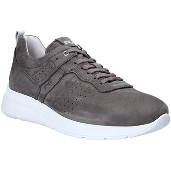 Sapatos Homem Sapatilhas NeroGiardini P900920U Cinzento