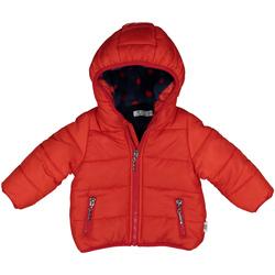 Textil Criança Casacos  Melby 20Z0081 Vermelho