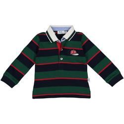 Textil Rapaz Polos mangas compridas Melby 20C0270 Verde