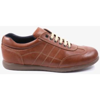 Sapatos Homem Sapatilhas Traveris 24102 Castanho