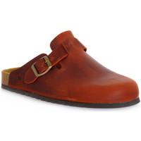 Sapatos Tamancos Bioline RUGGINE INGRASSATO Arancione