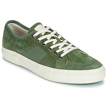 Sapatos Homem Sapatilhas Globe SURPLUS Verde