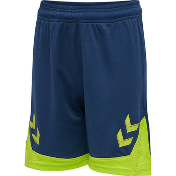 Textil Rapaz Shorts / Bermudas Hummel Short enfant  Hmllead bleu/vert