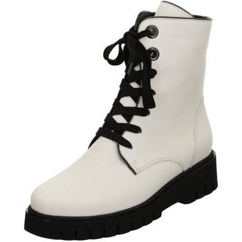 Sapatos Mulher Botins Ara Ackson Keil St Hs White