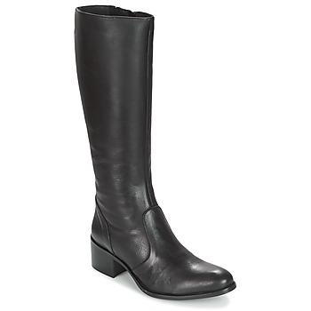 Sapatos Mulher Botas Betty London IROIN Preto