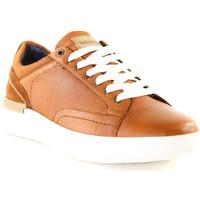Sapatos Homem Sapatilhas Wrangler WM01181A Castanho