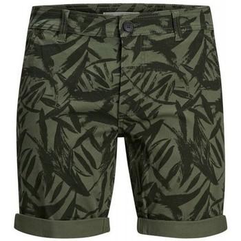 Textil Homem Shorts / Bermudas Produkt Takm chino 12171311 Verde