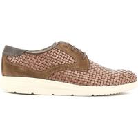 Sapatos Homem Sapatos Soldini 19818 I S87 Castanho