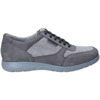 Sapatos Homem Sapatilhas Stonefly 110625 Cinzento
