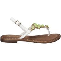 Sapatos Mulher Chinelos Gardini 1108754 Branco