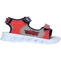 Sapatos Criança Sandálias Bulls S19-SBL838 Azul