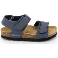 Sapatos Criança Sandálias Grunland SB0014 Azul