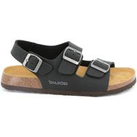 Sapatos Homem Sandálias Grunland SB3645 Preto