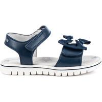 Sapatos Criança Sandálias Lumberjack SG41906 005 S01 Azul