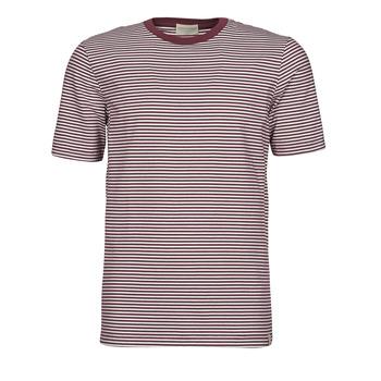 Textil Homem T-Shirt mangas curtas Scotch & Soda 160847 Vermelho / Branco
