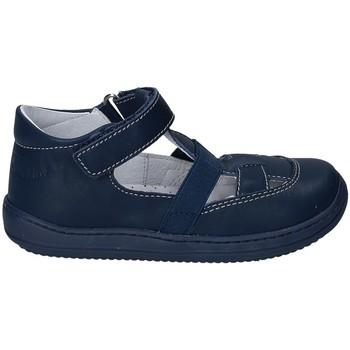 Sapatos Criança Sandálias Naturino 2012164-01-9102 Azul