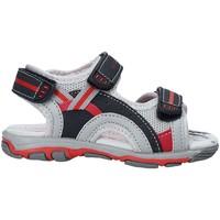 Sapatos Criança Sandálias U.s. Golf S19-SUK466 Azul