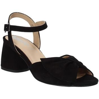 Sapatos Mulher Sandálias IgI&CO 3186533 Preto