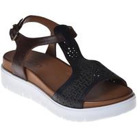 Sapatos Mulher Sandálias Bueno Shoes N3403 Preto