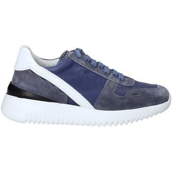 Sapatos Mulher Sapatilhas Triver Flight 101-02C Azul
