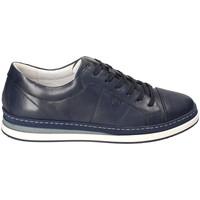 Sapatos Homem Sapatilhas IgI&CO 3138100 Azul