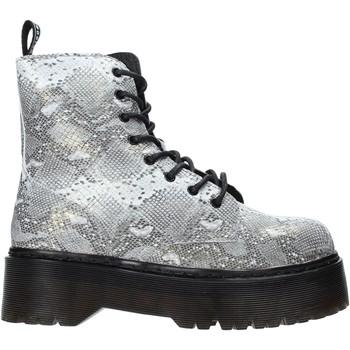 Sapatos Mulher Botins Gold&gold B19 GA122 Cinzento